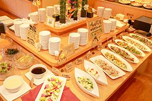 新鮮野菜のサラダメージ