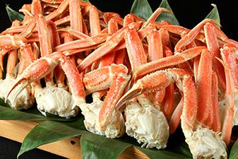 本ずわい蟹